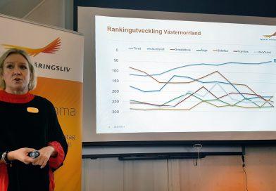 Härnösand tappar i årets företagsranking